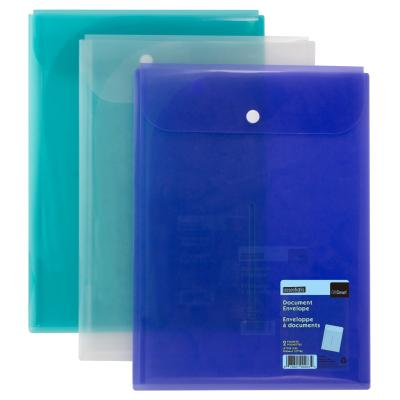 2-Pocket Poly Envelope, Vertical, Assorted