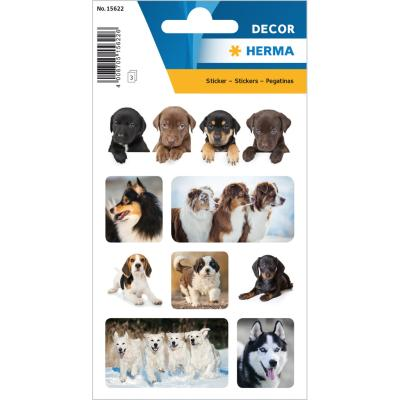 Stickers DÉCOR Dog Favorites