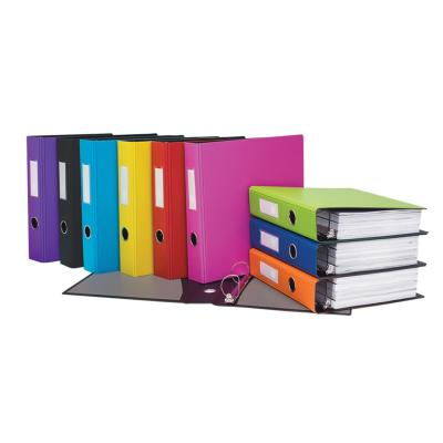 "1"" Heavy-Duty Binder, D-Ring, Assorted"
